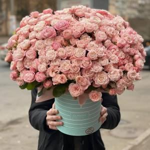 Композиция 101 кустовая пионовидная роза в коробке R1976