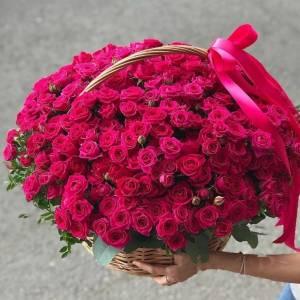Корзина 101 ветка кустовой малиновой розы R1952