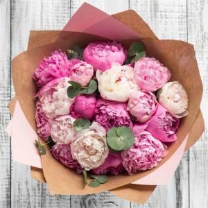 Нежный букет 15 розовых пионов премиум R632